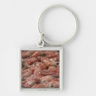 Fresh Squid Keyring