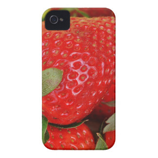 Fresh strawberries iPhone 4 Case-Mate case