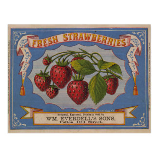 Fresh Strawberries Postcard