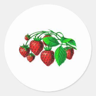 Fresh Strawberries Round Sticker