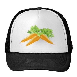 Fresh tasty orange carrots illustration mesh hats