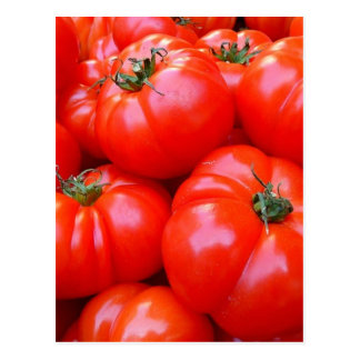fresh tomatoes postcard