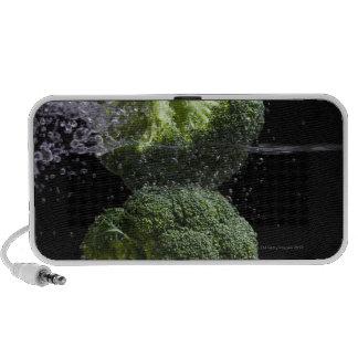 fresh vegetables & food hygiene notebook speaker