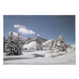 Freshly Fallen Snow Place Mats