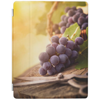 Freshly Harvested Grapes iPad Cover