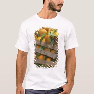 freshly picked oranges T-Shirt