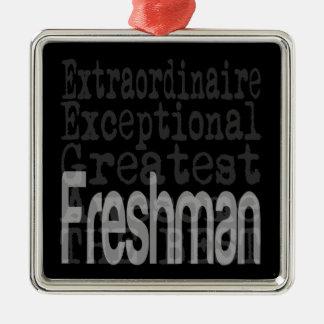 Freshman Extraordinaire Silver-Colored Square Decoration