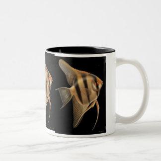 Freshwater Angelfish Coffee Mug