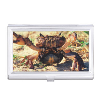 Freshwater Crab Observing, Durban Business Card Holder