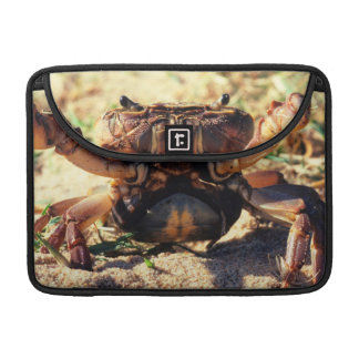 Freshwater Crab Observing, Durban Sleeve For MacBooks