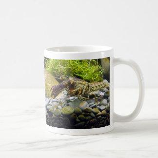 Freshwater crayfish classic white coffee mug