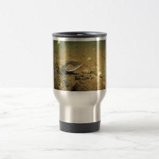 Freshwater Mussel Coffee Mug