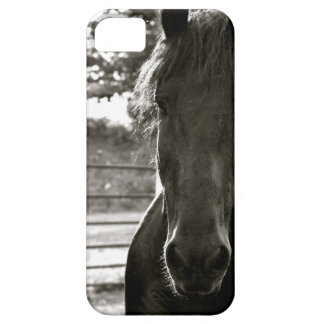 Fresian Horse IPhone Case Barely There iPhone 5 Case