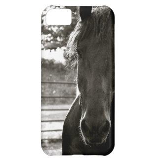 Fresian Horse IPhone Case iPhone 5C Case