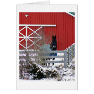 Fresian in the Snow Card