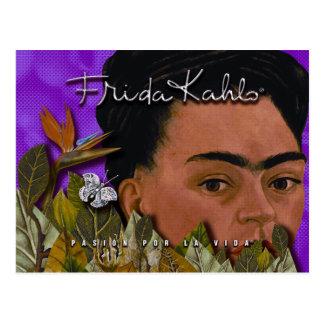 Frida Kahlo Pasion Por La Vida Postcard