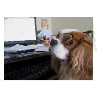 Friday Cavalier King Charles Spaniel at the office Note Card