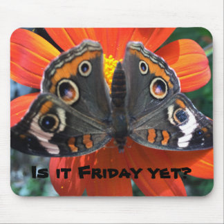 Friday humor mouse pad