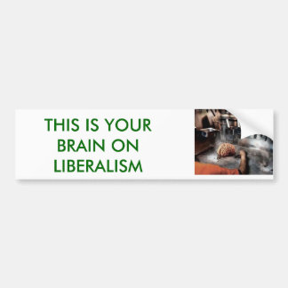 FRIED, THIS IS YOUR BRAIN ON LIBERALISM BUMPER STICKER
