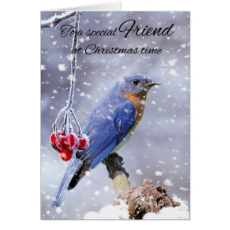 Friend Bluebird In The Snow Winter Holiday Card