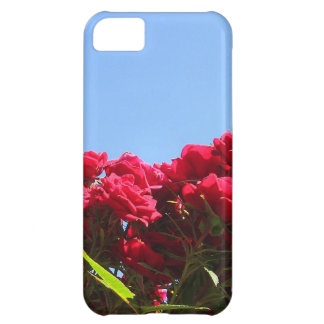 Friend Quote with Roses iPhone 5C Cover