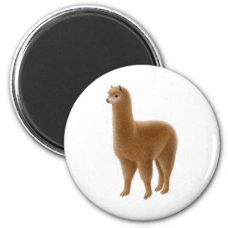 Friendly Brown Alpaca Magnet