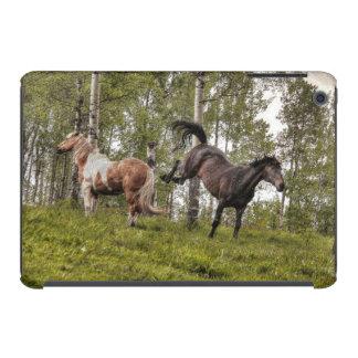 Friendly Buck Between Two Horses iPad Mini Retina Cover