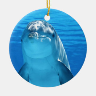 Friendly Dolphin Photo Christmas Ornament