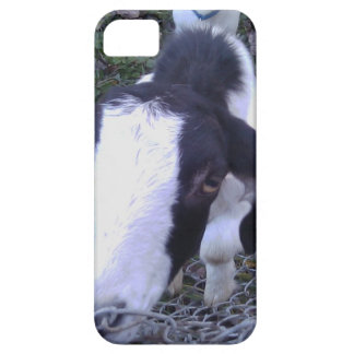 Friendly Goat iPhone 5 Cases