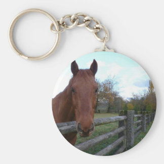 Friendly Horse by the Fence Basic Round Button Key Ring