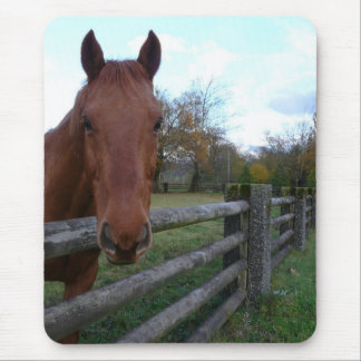 Friendly Horse by the Fence Mousepad