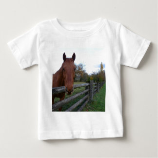 Friendly Horse by the Fence Tee Shirts