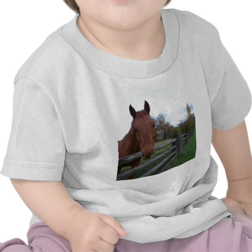 Friendly Horse by the Fence Tee Shirt