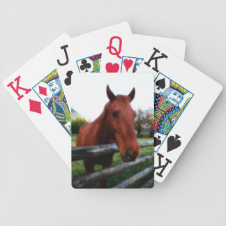 Friendly Horse Leans Over Fence Poker Deck