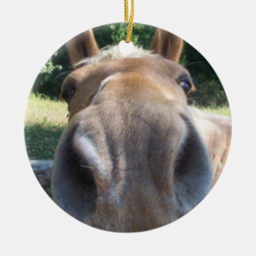 Friendly Horse Ornament