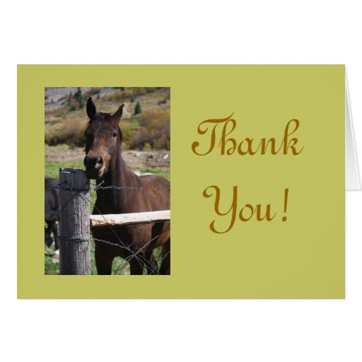 Friendly Horse Thank You Card