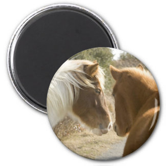 FRIENDLY HORSES 6 CM ROUND MAGNET