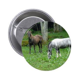 FRIENDLY HORSES BUTTON