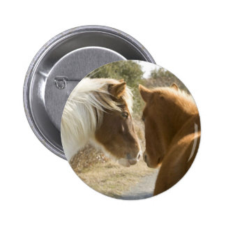 FRIENDLY HORSES BUTTONS