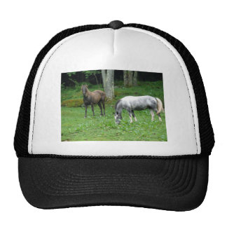 FRIENDLY HORSES TRUCKER HAT