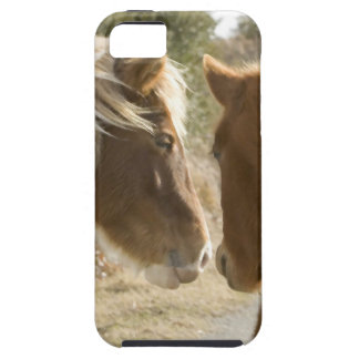 FRIENDLY HORSES iPhone 5 COVER