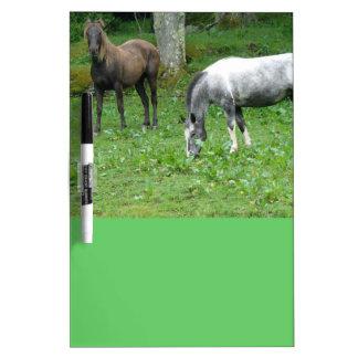 FRIENDLY HORSES DRY ERASE WHITEBOARDS