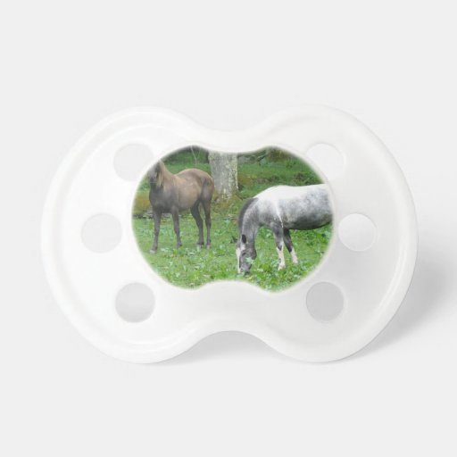 FRIENDLY HORSES BABY PACIFIER