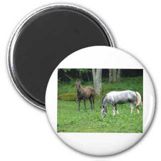 FRIENDLY HORSES REFRIGERATOR MAGNET