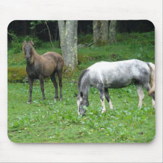 FRIENDLY HORSES MOUSEPAD