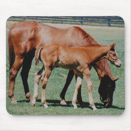 FRIENDLY HORSES MOUSEPADS
