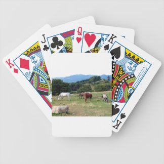 FRIENDLY HORSES BICYCLE CARD DECK