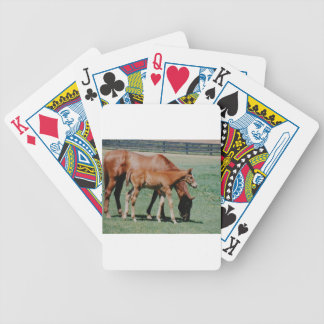 FRIENDLY HORSES BICYCLE PLAYING CARDS