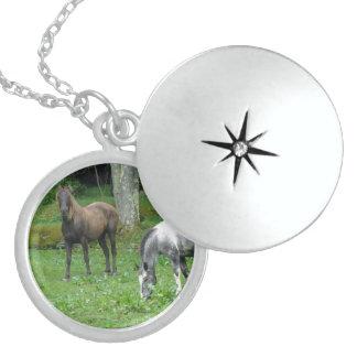 FRIENDLY HORSES ROUND LOCKET NECKLACE