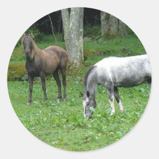 FRIENDLY HORSES ROUND STICKER